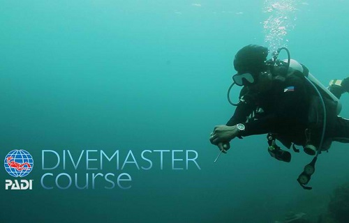 PADi divermaster course, be the best