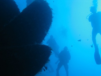 learn to scuba dive with a padi dive club in hertfordhsire, bedford and cambridge